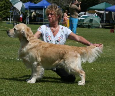http://dogwebs.net/Sandlewood/images/GetImage.asp?ID=333